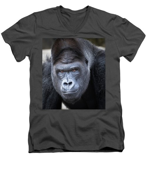 Gorrilla  Men's V-Neck T-Shirt
