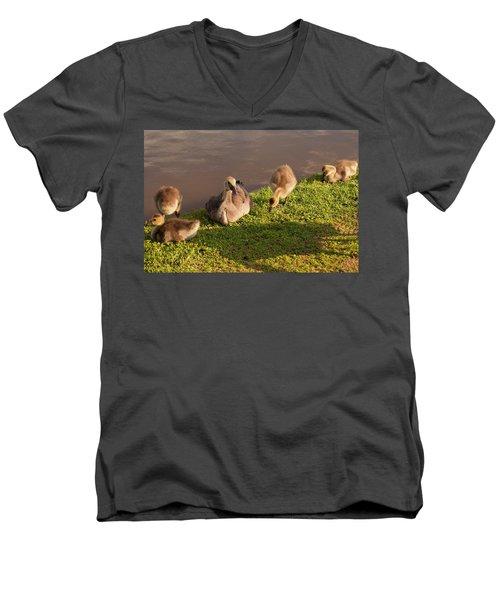 Goslings Basking In The Sunset Men's V-Neck T-Shirt by Chris Flees