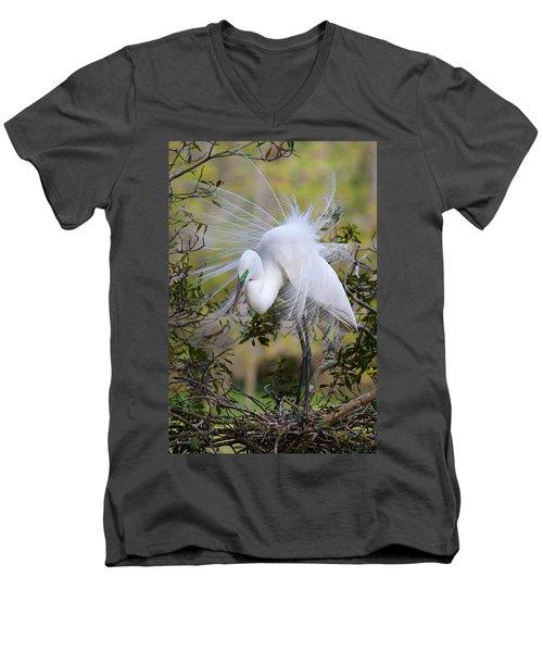 Grace In Nature Men's V-Neck T-Shirt