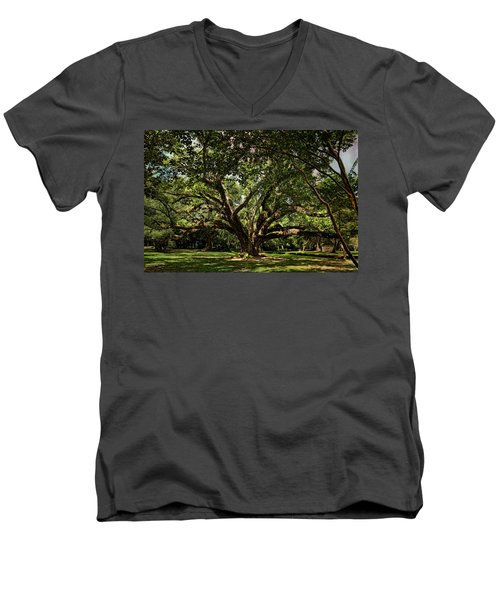 Grand Oak Tree Men's V-Neck T-Shirt by Judy Vincent