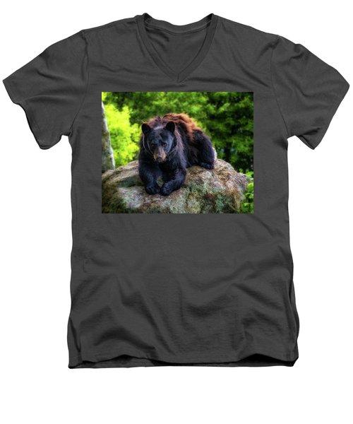 Grandfather Mountain Black Bear Men's V-Neck T-Shirt