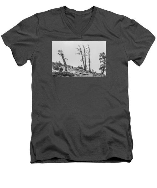 Granite Staitcase Men's V-Neck T-Shirt