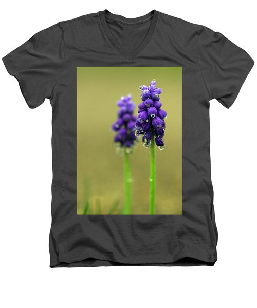 Grape Hyacinth Men's V-Neck T-Shirt by Joseph Skompski