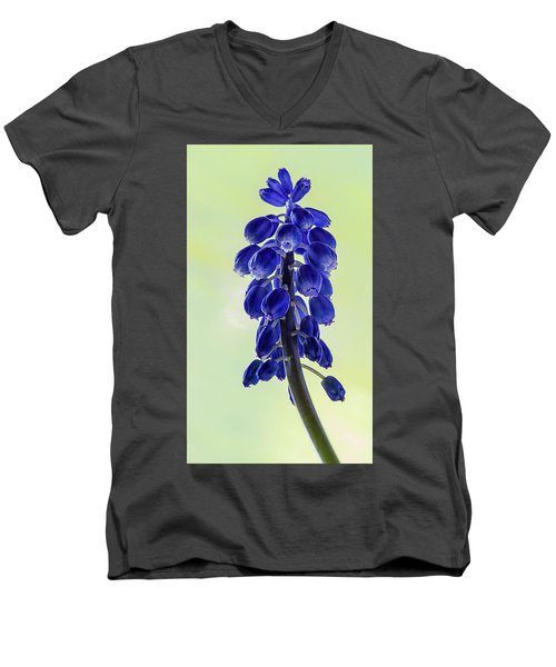 Grape Hyacinth Men's V-Neck T-Shirt