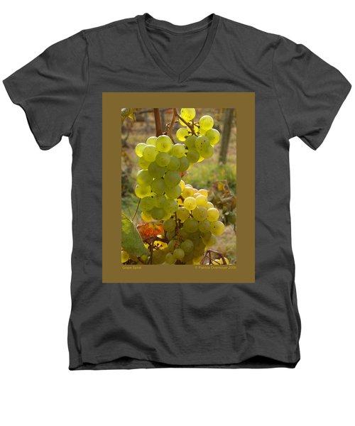 Grape Spiral Men's V-Neck T-Shirt by Patricia Overmoyer