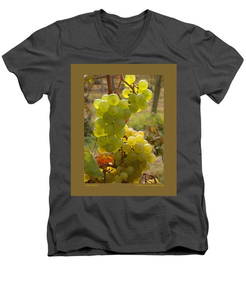 Grape Spiral Men's V-Neck T-Shirt