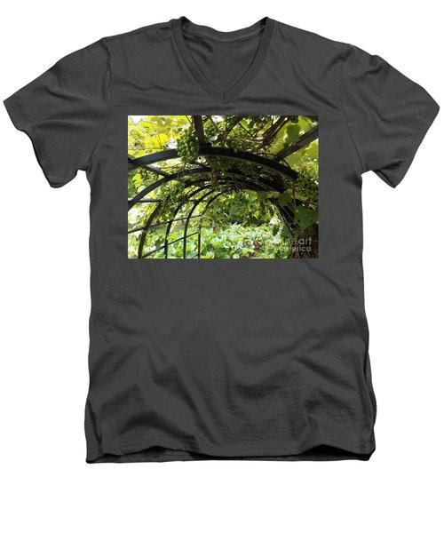 Grape Tunnel Men's V-Neck T-Shirt