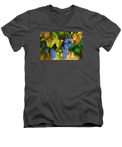 Men's V-Neck T-Shirt featuring the photograph Grapes Grapes Grapes by Lynn Hopwood