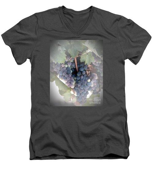 Grapes On The Vine I Men's V-Neck T-Shirt