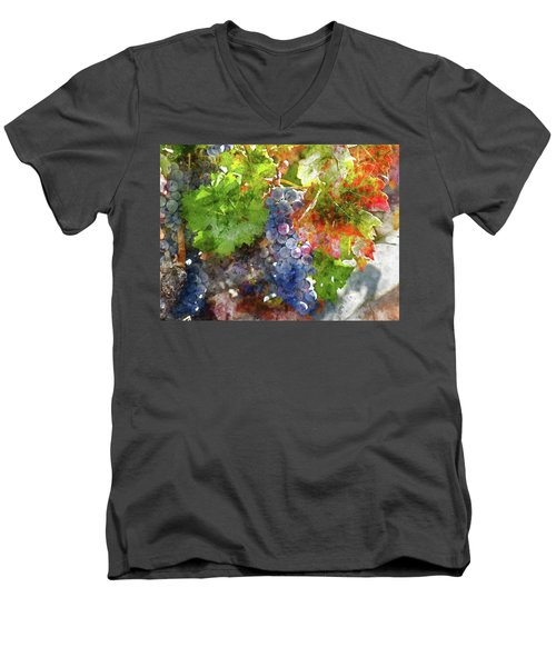 Grapes On The Vine In The Autumn Season Men's V-Neck T-Shirt