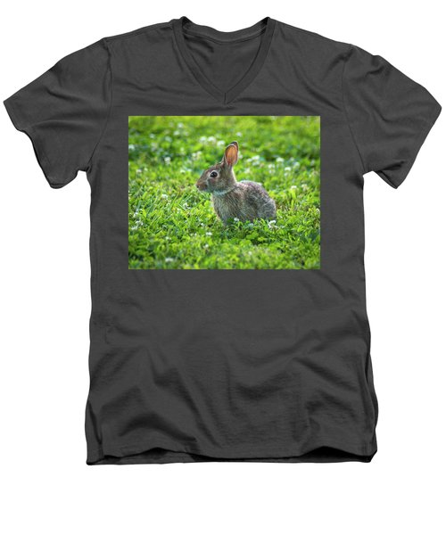 Men's V-Neck T-Shirt featuring the photograph Grass Hoppers by Bill Pevlor