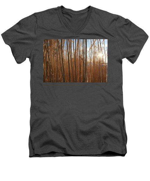 Grasses Men's V-Neck T-Shirt