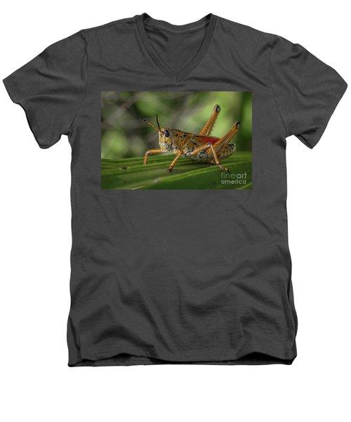 Grasshopper And Palm Frond Men's V-Neck T-Shirt
