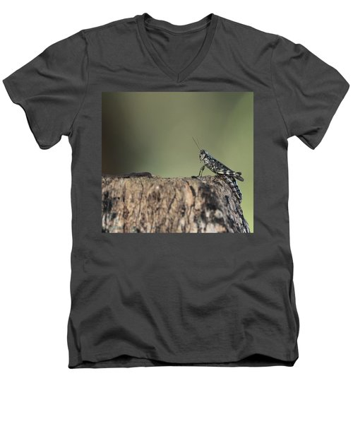 Grasshopper Great River New York Men's V-Neck T-Shirt by Bob Savage