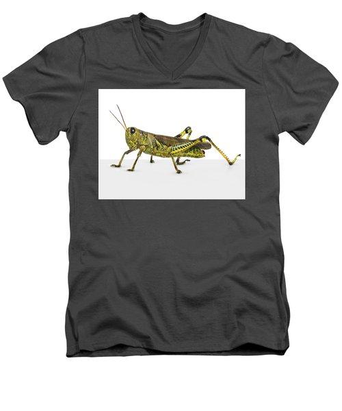 Grasshopper Men's V-Neck T-Shirt by James Larkin