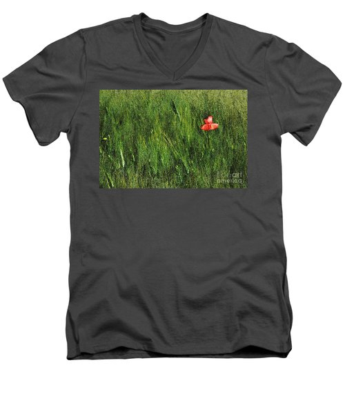Grassland And Red Poppy Flower 2 Men's V-Neck T-Shirt
