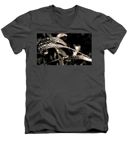 Grassland Men's V-Neck T-Shirt