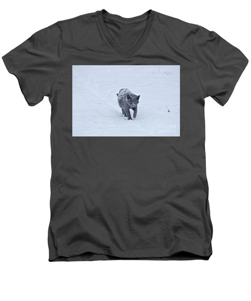 Gray On White Men's V-Neck T-Shirt