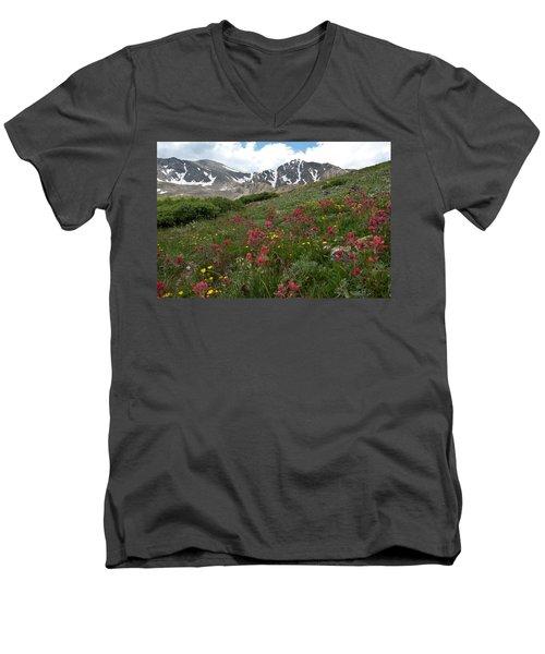 Gray's And Torreys Men's V-Neck T-Shirt