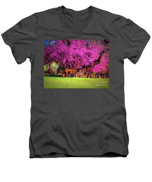 Grazing Horse  ... Men's V-Neck T-Shirt by Chuck Caramella