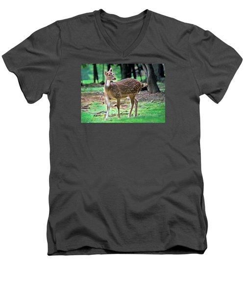 Grazing Men's V-Neck T-Shirt by Marion Johnson