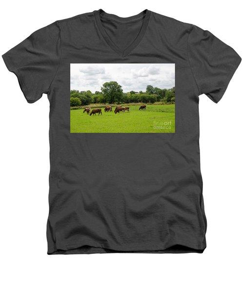 Men's V-Neck T-Shirt featuring the photograph Grazing Milk Cows by Kennerth and Birgitta Kullman