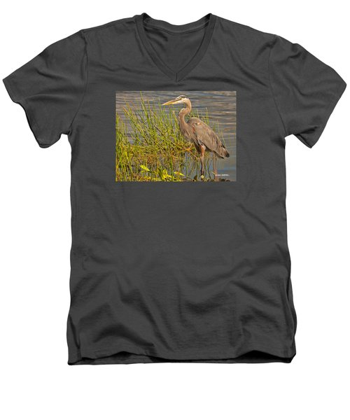 Men's V-Neck T-Shirt featuring the photograph Great Blue At The Park by Don Durfee