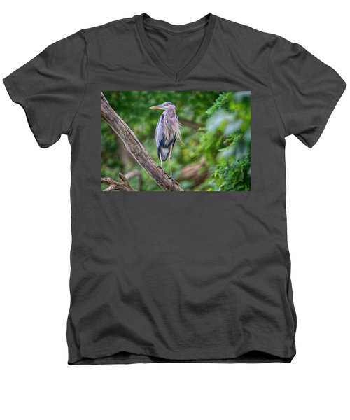 Great Blue Heron 2 Men's V-Neck T-Shirt by Gary Hall