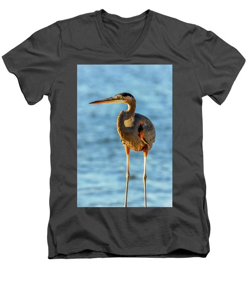 Great Blue Heron Closeup Men's V-Neck T-Shirt