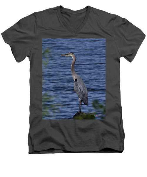 Men's V-Neck T-Shirt featuring the photograph Great Blue Heron Dmsb0001 by Gerry Gantt