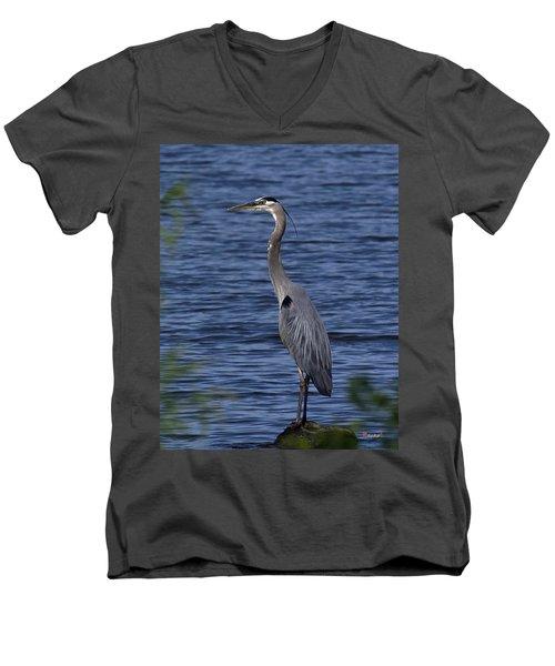 Great Blue Heron Dmsb0001 Men's V-Neck T-Shirt