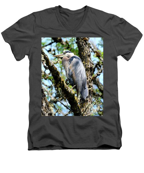 Great Blue Heron In A Tree Men's V-Neck T-Shirt