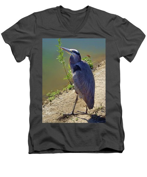 Men's V-Neck T-Shirt featuring the photograph Great Blue Heron by Mariola Bitner