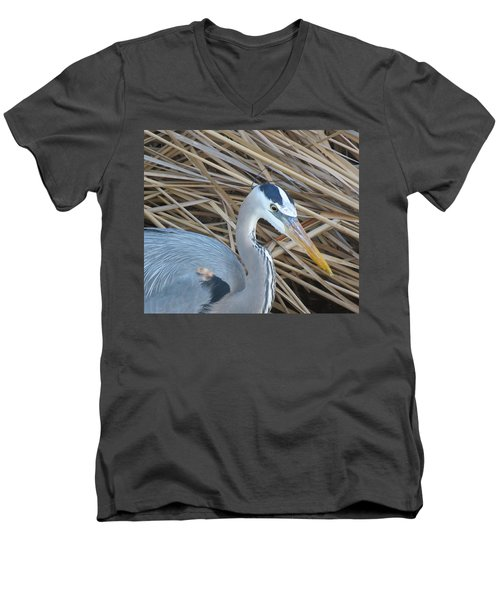 Great Blue Heron On Spi Men's V-Neck T-Shirt