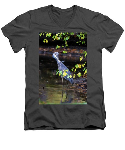 Great Blue Heron With An Itch Men's V-Neck T-Shirt