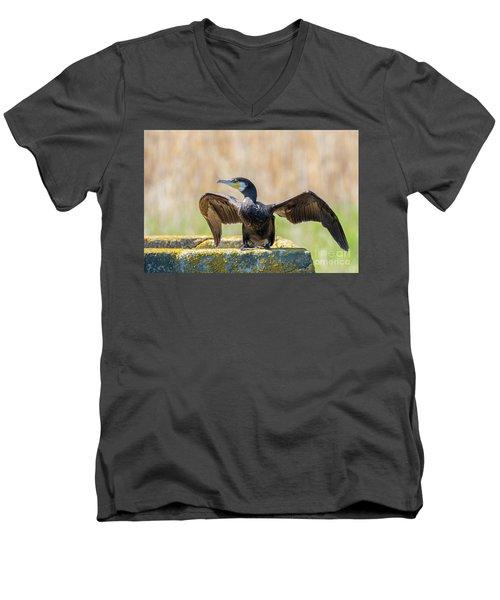 Great Cormorant - Phalacrocorax Carbo Men's V-Neck T-Shirt