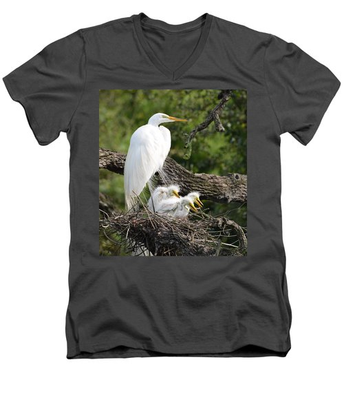 Great Egret Family  Men's V-Neck T-Shirt