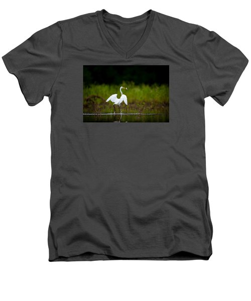 Great Egret, Great Fisherman Men's V-Neck T-Shirt