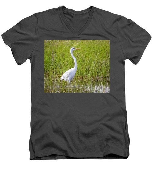 Men's V-Neck T-Shirt featuring the photograph Great Egret In The Spring  by Ricky L Jones