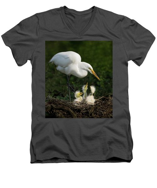 Great Egret With Chicks Men's V-Neck T-Shirt
