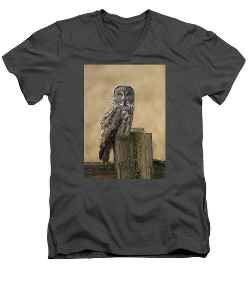 Men's V-Neck T-Shirt featuring the photograph Great Gray Owl by Doug Herr