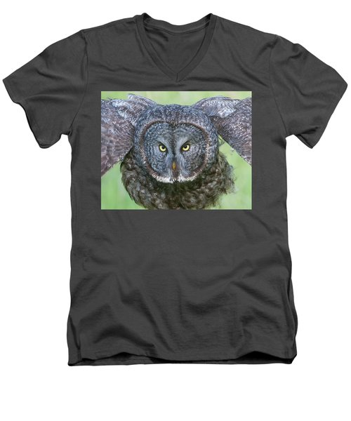 Great Gray Owl Flight Portrait Men's V-Neck T-Shirt