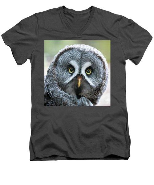 Great Grey Owl Closeup Men's V-Neck T-Shirt