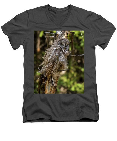 Great Grey Owl In Windy Spring Men's V-Neck T-Shirt by Yeates Photography