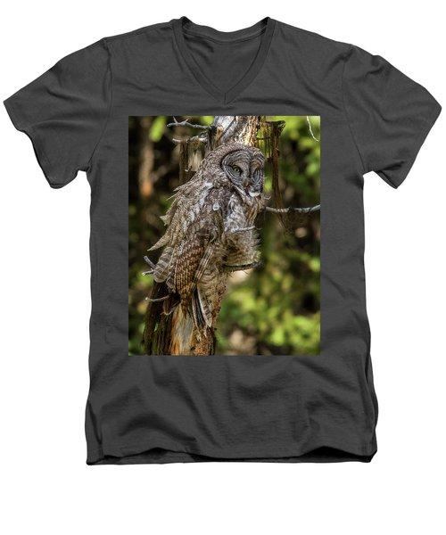 Great Grey Owl In Windy Spring Men's V-Neck T-Shirt
