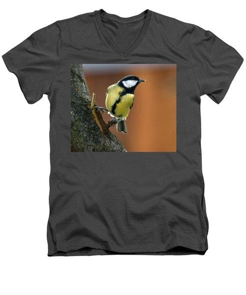 Great Tit  Men's V-Neck T-Shirt