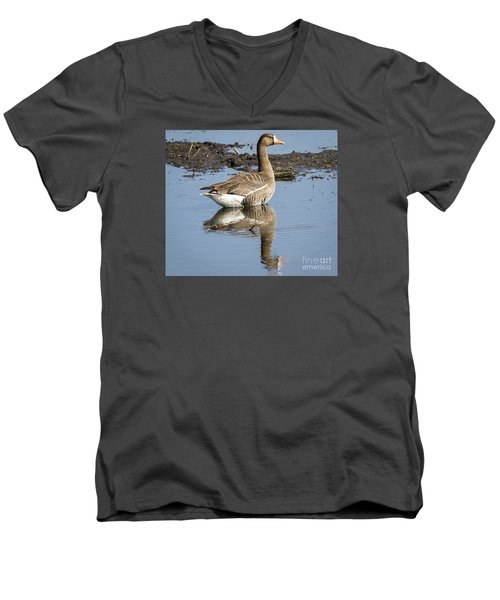Men's V-Neck T-Shirt featuring the photograph Great White Fronted Goose by Ricky L Jones