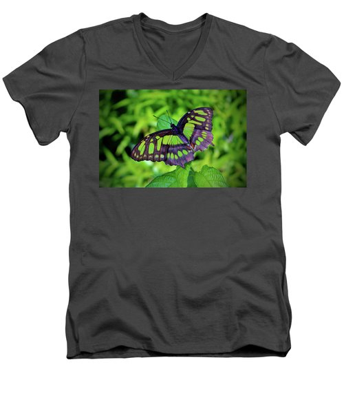 Green And Black Butterfly Men's V-Neck T-Shirt