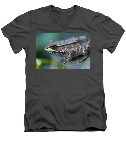 Green Frog Men's V-Neck T-Shirt