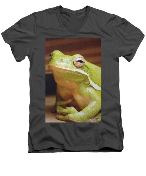 Green Frog Men's V-Neck T-Shirt by J R Seymour